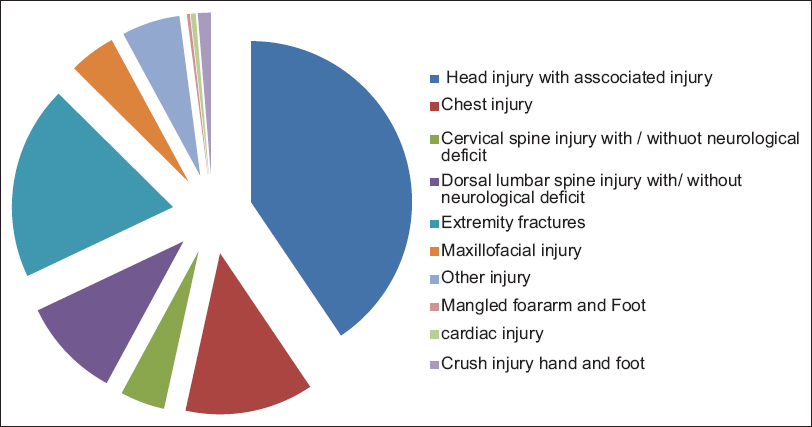 Figure 3: Chart showing type of injuries